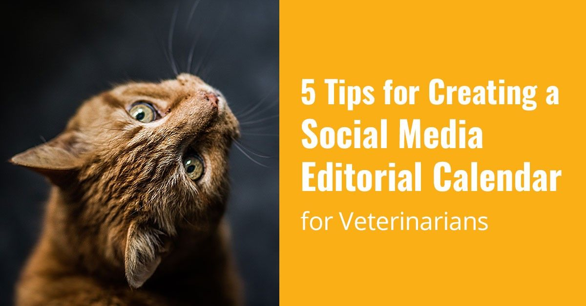 5 Tips for Creating a Social Media Editorial Calendar for Veterinarians