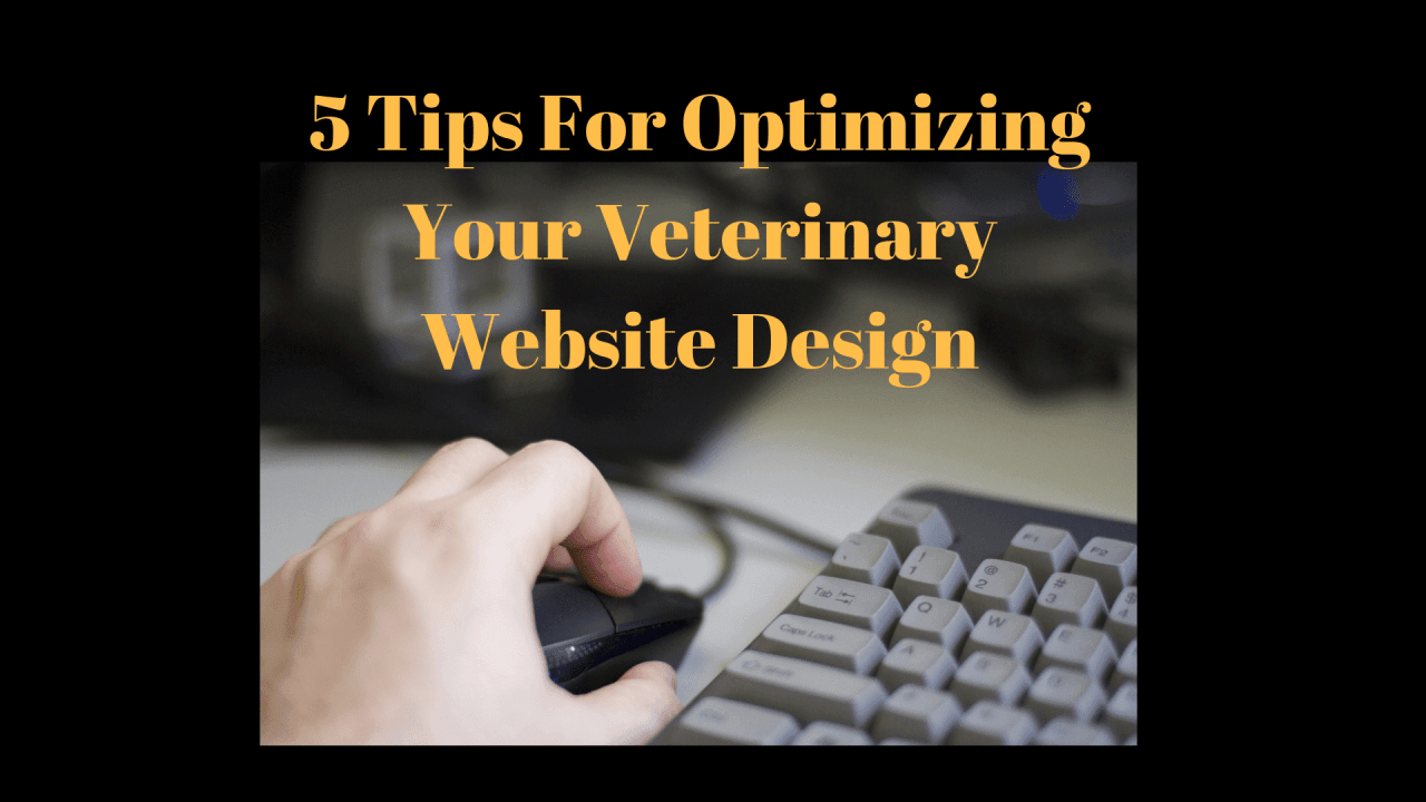 5-Tips-For-Optimizing-Your-Veterinary-Website-Design