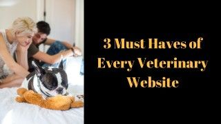 3-Must-Haves-of-Every-Veterinary-Websit_20181003-185424_1