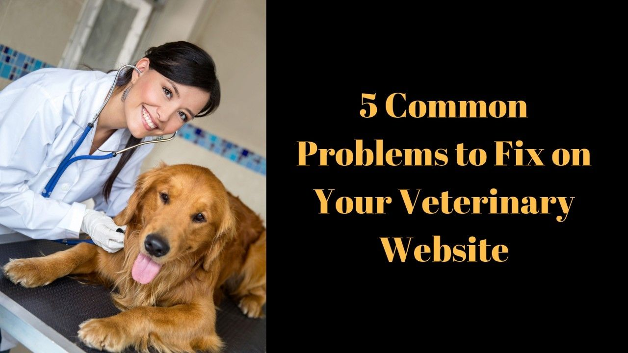 5-Common-Problems-to-Fix-on-Your-Veterinary-Websit_20181003-185114_1