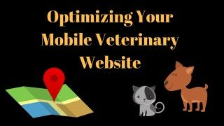 Optimizing-Your-Mobile-Veterinary-Website