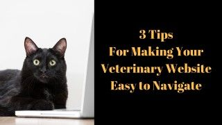 3-Tips-For-Making-Your-Veterinary-Website-Easy-to-Navigate