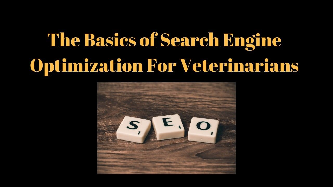 The-Basics-of-Search-Engine-Optimization-For-Veterinarians-1