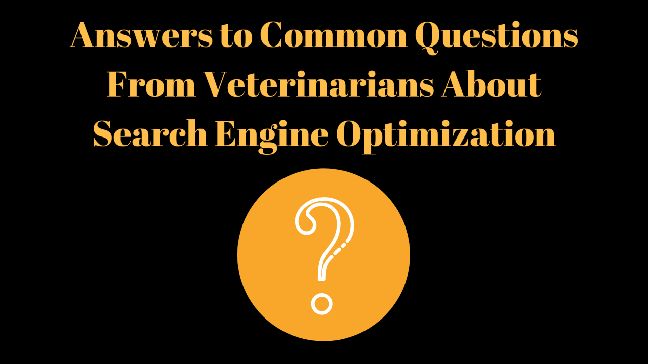 Answers-to-Common-Questions-From-Veterinarians-About-Search-Engine-Optimization-3