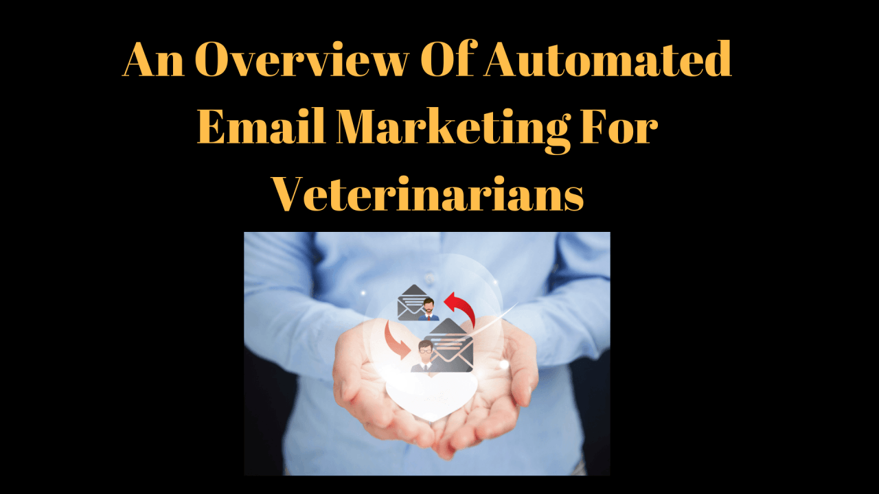 An-Overview-Of-Automated-Email-Marketing-For-Veterinarians